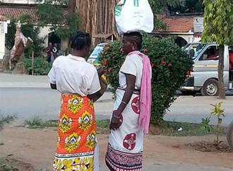 Allarme in Kenya per le aflatossine