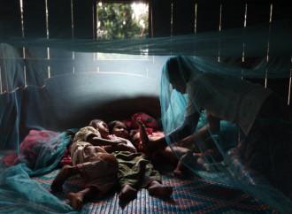 Nel Sud est asiatico si diffonde la malaria resistente ai farmaci