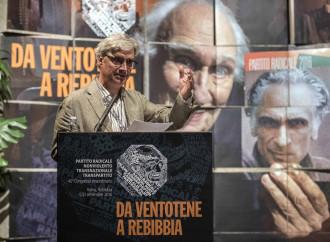 Ora è troppo: basilica ostaggio dei Radicali a congresso