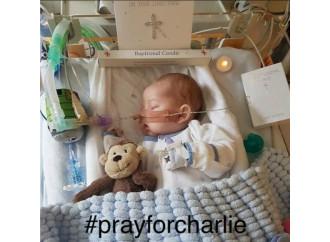 Charlie deve morire: lo Stato condanna a morte i disabili