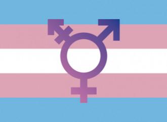 Femministe vs legge trans spagnola