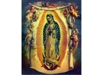 Sulle tracce di Maria: Guadalupe