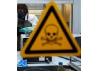 Nessuno vuole le armi chimiche di Assad