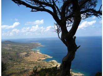 Cipro: ok agli aiuti. Ma con riserva