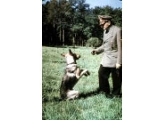 """""""Premio Hitler"""" a chi ama gli animali più dell'uomo"""