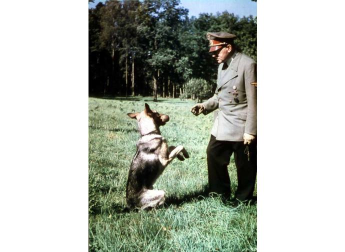 Hitler e la sua cagna Blondi