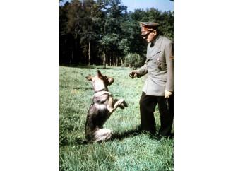 """Parlare di """"nazisti verdi"""" non è esagerato"""