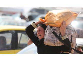 Iraq, testimonianze dall'inferno jihadista