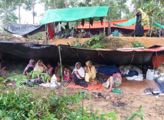 Oltre 700.000 Rohingya si preparano a trascorrere un lungo periodo lontano da casa