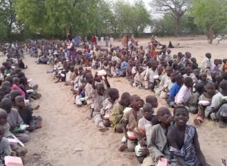 Decine di migliaia di nuovi profughi affollano i campi allestiti nel nord est della Nigeria