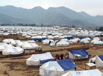 Diventa cronica la condizione di sfollato per centinaia di migliaia di profughi e rimpatriati afghani