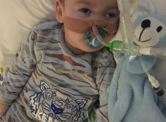 Alfie Evans, what's at stake?
