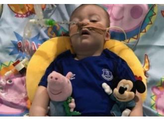 In lotta per Alfie, il bimbo senza diagnosi da uccidere