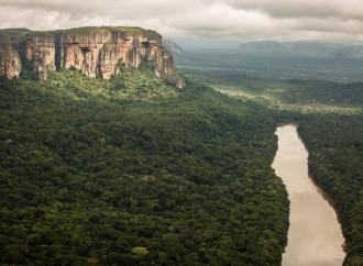 Ecco perché l'Amazzonia è un territorio di morte