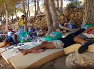 Centinaia di extracomunitari irregolari sbarcano in Italia in poche ore