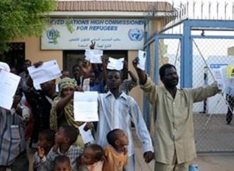 La mafia dei funzionari Onu che assistono i profughi