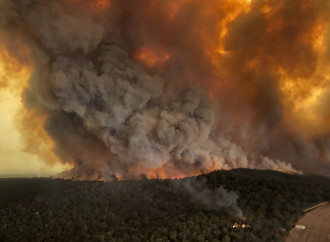 Incendi in Australia, è un disastro umano