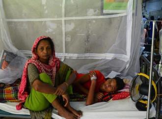 Una epidemia di dengue sta creando panico in Bangladesh