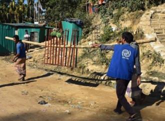 L'Oim in aiuto non solo dei rifugiati Rohingya