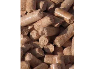 """L'imbroglio delle biomasse """"pulite"""""""