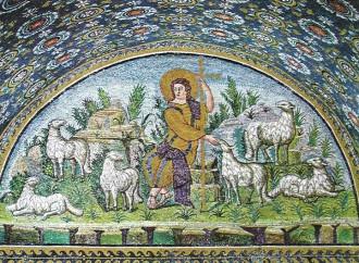 San Giulio, la cura delle pecore viene prima di tutto