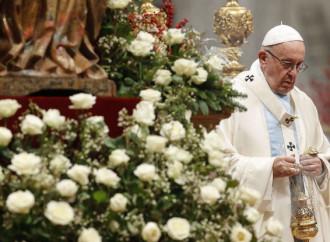 Il Papa: «Servire la vita umana è servire Dio»