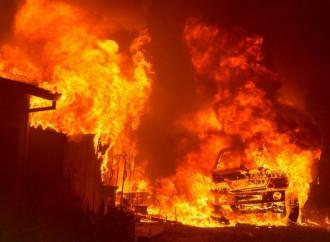 Incendi in California, miti e realtà