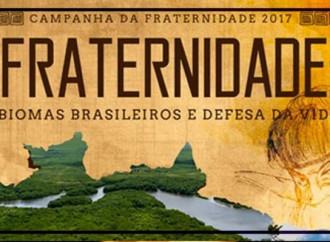 """""""Soldi a Ong abortiste"""": sotto accusa vescovi del Brasile"""