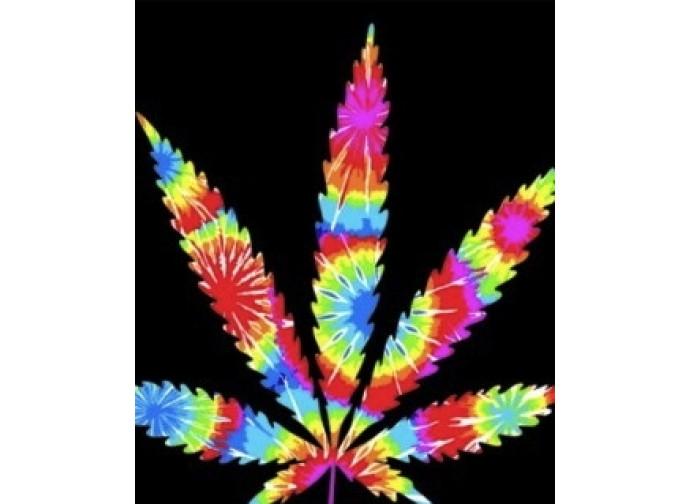 Presentata una proposta di legge per liberalizzare la cannabis