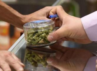 Lombardia: sì alla cannabis terapeutica ma l'Ue contesta