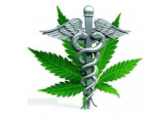 Cannabis, quanto poco ne conosciamo gli effetti