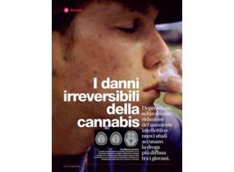 Altro che droga leggera: ecco i nuovi effetti della cannabis