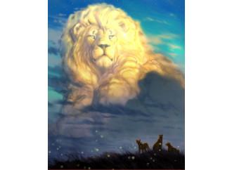 Per favore, non piangete per un leone