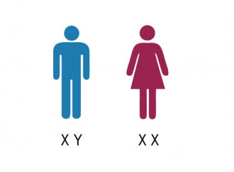 Il Collegio americano dei Pediatri contro l'ideologia gender