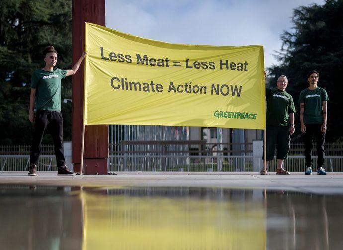 """""""Meno carne = meno caldo"""": aperto un nuovo fronte"""