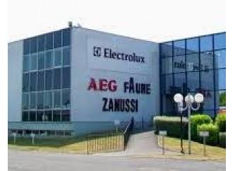 Caso Electrolux, chiedere a governi e sindacati