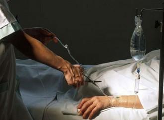 Farsi uccidere per donare organi, l'eutanasia corre veloce