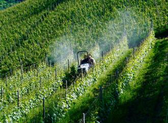 Agricoltura bio, c'è un substrato di pseudoscienza