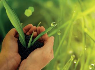 Eco-sostenibilità: pregare, ma per cosa?