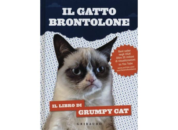 Grumpy Il Gatto Brontolone Che Ci Assomiglia Troppo La Nuova