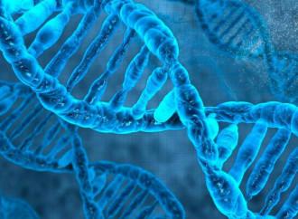 Studiare il Covid, c'entra anche la genetica