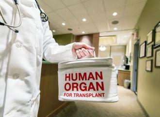 «Organi e trapianti, quanti dubbi sul momento della morte»