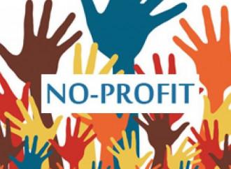 Il grave errore di incensare a priori il no profit