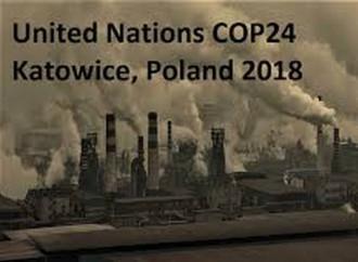 """""""Diplomazia climatica""""? È il suicidio dell'Europa"""