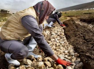 L'Oim chiede 41 milioni di dollari per assistere gli iracheni ancora sfollati
