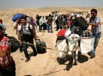 Timori di un ritorno dell'Isis in Iraq