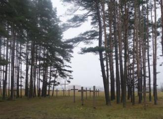 Kourapaty, la foresta delle croci a rischio distruzione