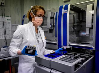 A Pavia la cura che funziona e sfida silenzio e interessi: «Così il plasma uccide il virus»