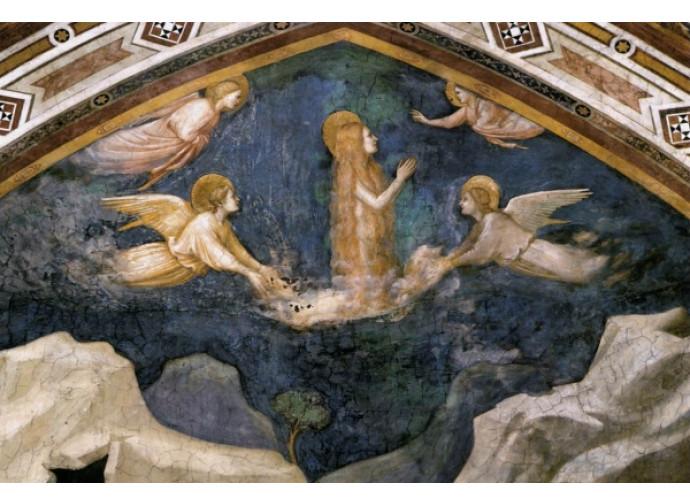 Giotto, la Maddalena elevata