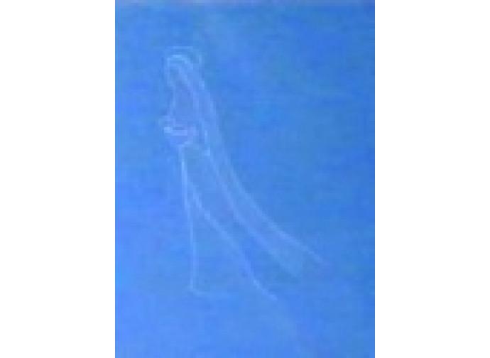 L'apparizione in cielo della Madonna
